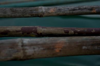 Bamboo boat